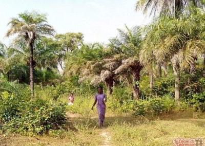 les enfants du cocon en balade